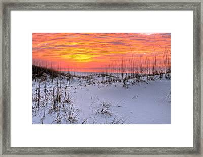 Dunes Of Orange Beach Framed Print by JC Findley