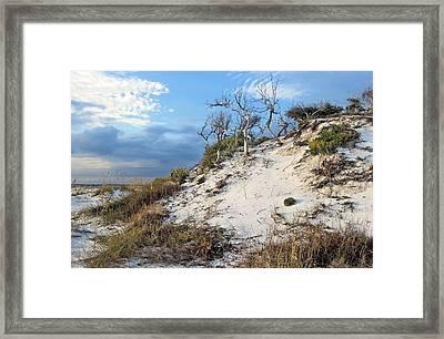 Dunes Of Santa Rosa Island Framed Print by JC Findley