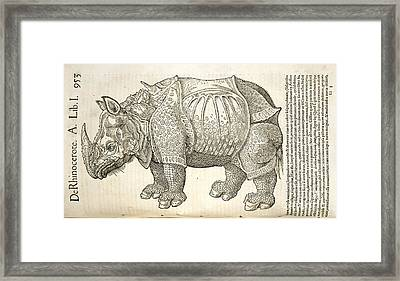 Durer's Rhinoceros, 16th Century Framed Print by Natural History Museum, London