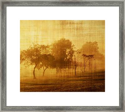 Dusty Mornings In The Sun Vintage Framed Print by Georgiana Romanovna