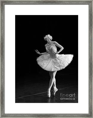 Dying Swan 3. Framed Print by Clare Bambers