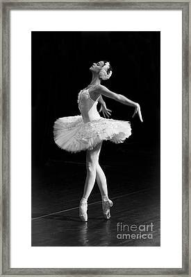 Dying Swan I. Framed Print by Clare Bambers