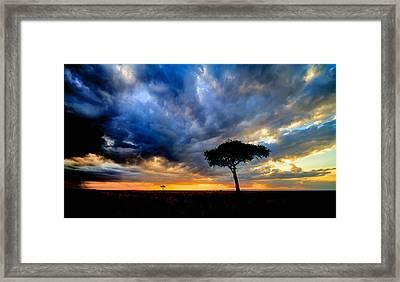 dynamic Mara sky Framed Print by Mike Gaudaur