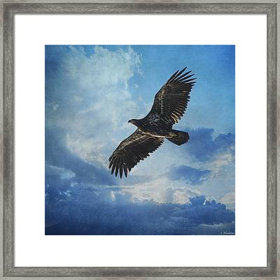 Eagle Art - Like An Eagle Framed Print by Jordan Blackstone
