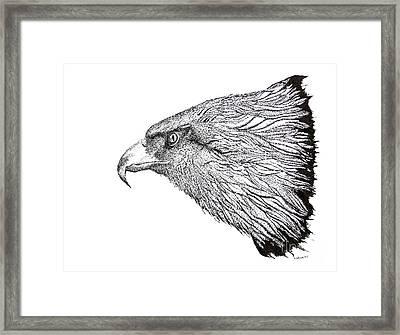 Eagle Head Drawing Framed Print by Mario Perez