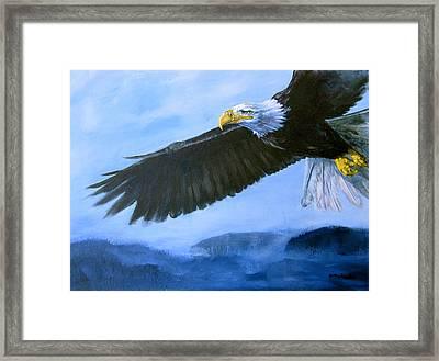 Eagle In Flight Framed Print by Eve McCauley