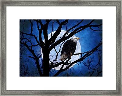 Eagle Night Framed Print by Gary Smith