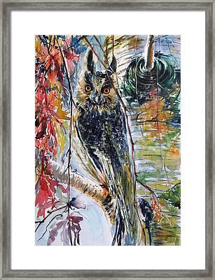 Eagle Owl Framed Print by Kovacs Anna Brigitta