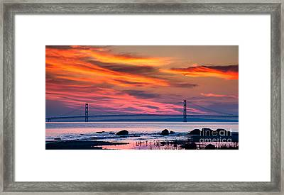 Early Bird Big Mac Framed Print by Todd Bielby