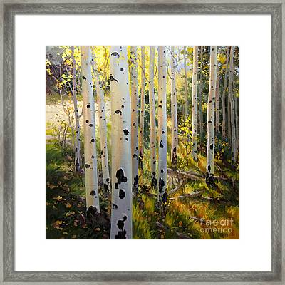 Early Fall Colors Of Aspen Framed Print by Gary Kim
