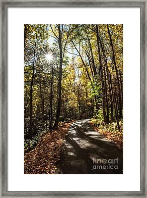 Early Fall On Roaring Fork Road Framed Print by Debbie Green