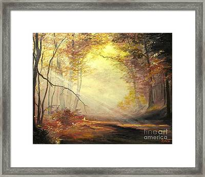 Early In The Morning Framed Print by Sorin Apostolescu
