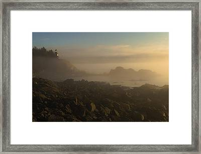 Early Morning Fog At Quoddy Framed Print by Marty Saccone
