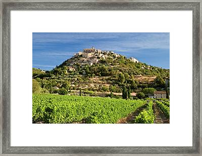 Early Morning In A Vineyard Framed Print by Brian Jannsen