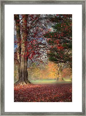 Early Morning In The Park Framed Print by Bill Wakeley