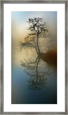 Early Morning Framed Print by manhART