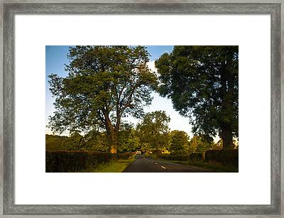 Early Morning On The Way To Trossachs. Scotland Framed Print by Jenny Rainbow