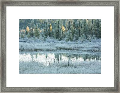 Early Morning Over Costello Creek Framed Print by Robert Postma