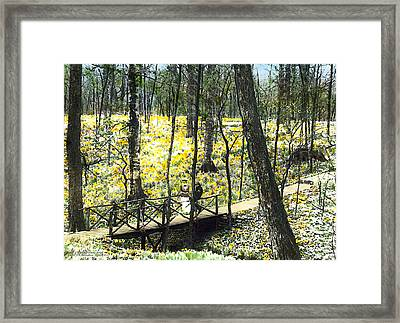 Early Snow Framed Print by Terry Reynoldson