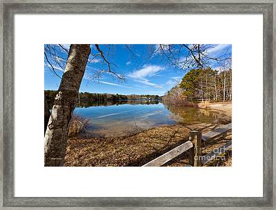 Early Spring On Long Pond Framed Print by Michelle Wiarda