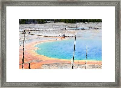 Earth Rainbow - Overhead View Of Grand Prismatic Spring In Yellowstone National Park.  Framed Print by Jamie Pham