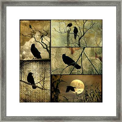 Earthy Crows Framed Print by Gothicolors Donna Snyder