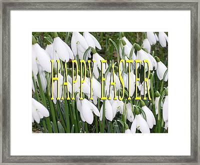 Easter 5 Framed Print by Patrick J Murphy