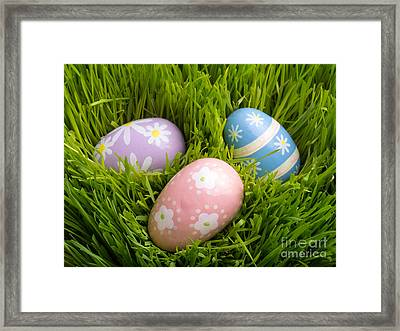 Easter Eggs In The Grass Framed Print by Edward Fielding