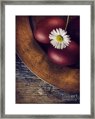 Easter Eggs Framed Print by Jelena Jovanovic