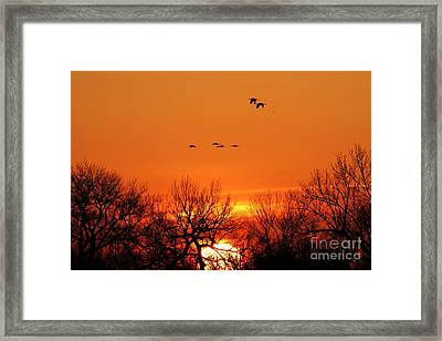 Easter Sunrise Framed Print by Elizabeth Winter