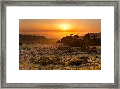 Easy Living - Russian Ridge California Framed Print by Matt Tilghman