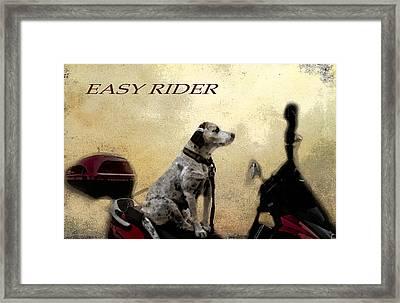Easy Rider Framed Print by Belinda Greb