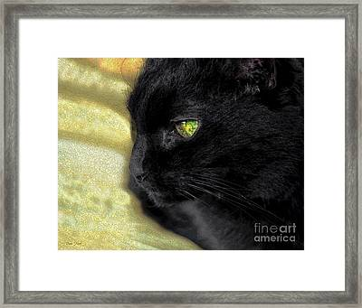 Ebony Framed Print by Dale   Ford