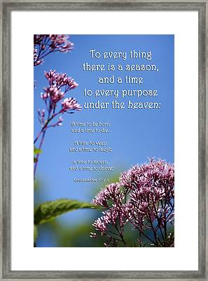 Ecclesiastes 3-1 Framed Print by Christina Rollo