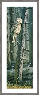Edge Of The Burn Framed Print by Paul Krapf