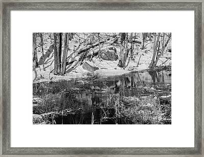 Edge Of The Marsh Framed Print by Alana Ranney