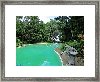 Edsel And Eleanor Ford Pool Framed Print by Michael Rucker