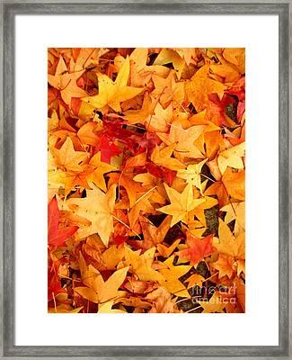 Efx.8 Framed Print by Shasta Eone