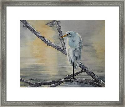 Egret At Dusk Framed Print by Patricia Pushaw