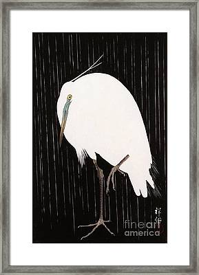 Egret In The Rain Framed Print by Pg Reproductions