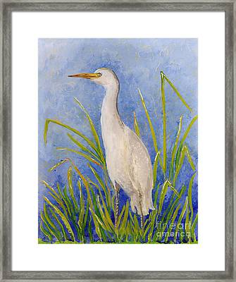 Egret Morning Framed Print by Anna Skaradzinska