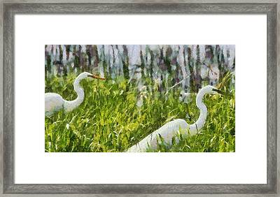 Egrets Painting Framed Print by Dan Sproul