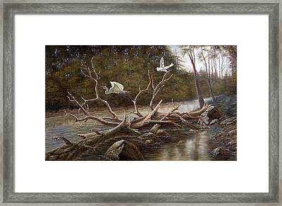 Egret's Paradise Framed Print by Gregory Perillo