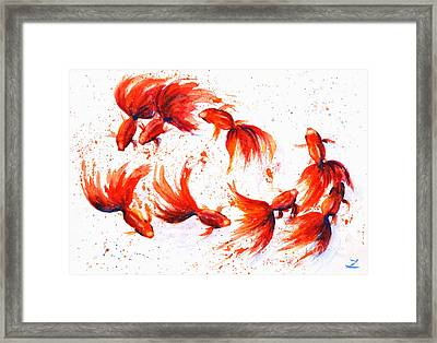 Eight Dancing Goldfish  Framed Print by Zaira Dzhaubaeva