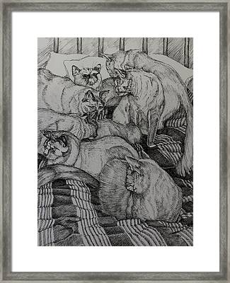 Eight Is Enough Framed Print by Janet Felts
