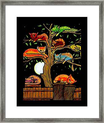 Eight Tree Cats Framed Print by Jim Harris
