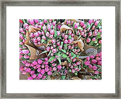 Eightyeight Tulips Framed Print by Cadence Spalding