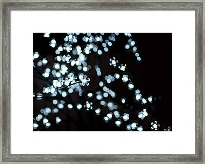 Electric Cherry Blossoms At Night Abstract Framed Print by Lisa Knechtel
