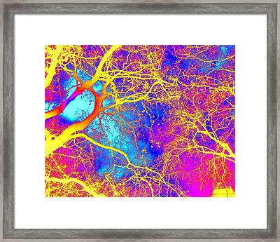 Electricity Framed Print by Cathy Jacobs