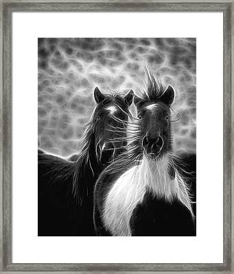 Electrified And Wild D8873 Framed Print by Wes and Dotty Weber